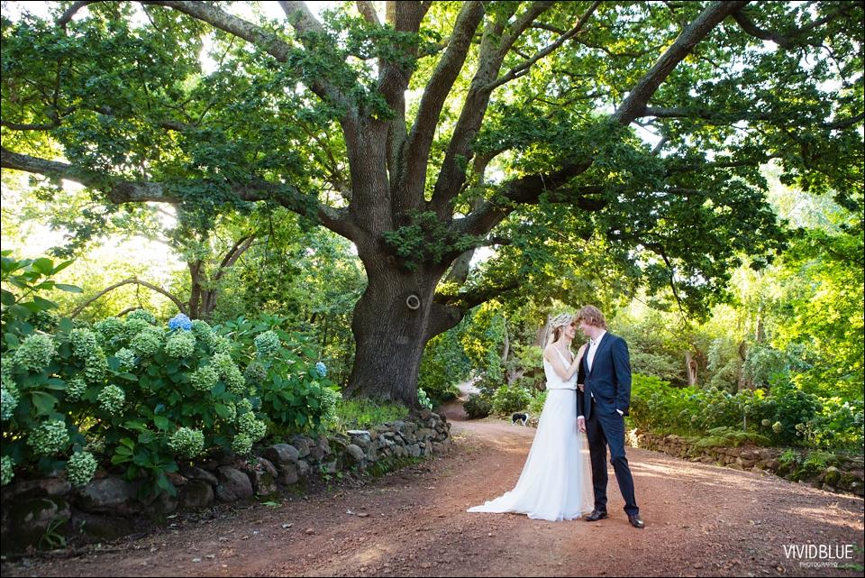 Vividblue-blue-heath-terri-wedding-oak-valley-elgin052