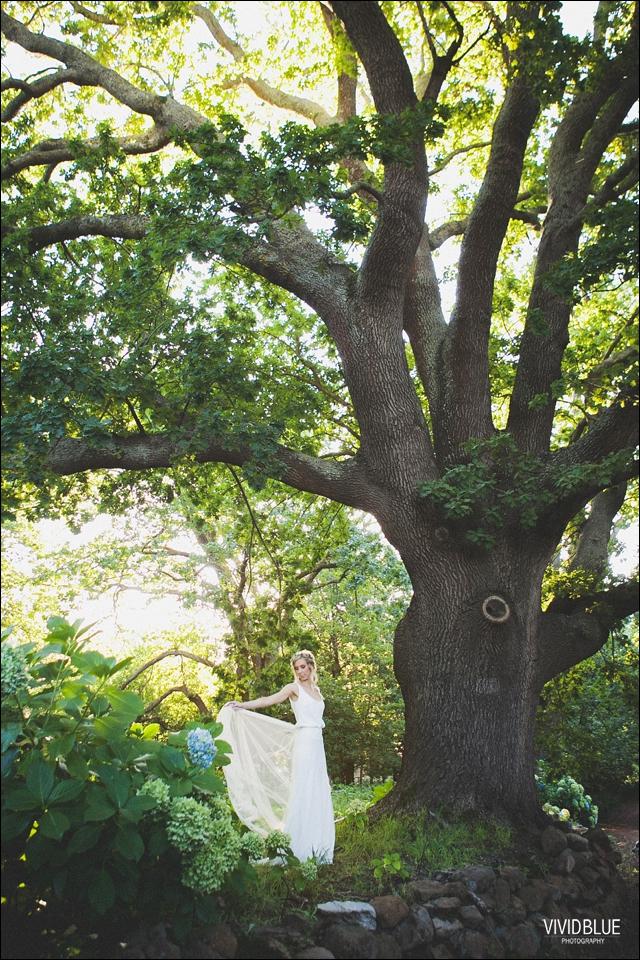 Vividblue-blue-heath-terri-wedding-oak-valley-elgin056