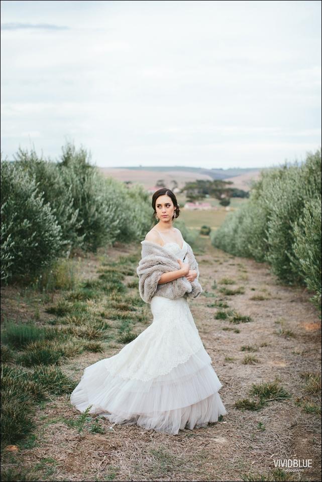 vividblue-Daniel-Liezel-gabrielskloof-wedding-photography077