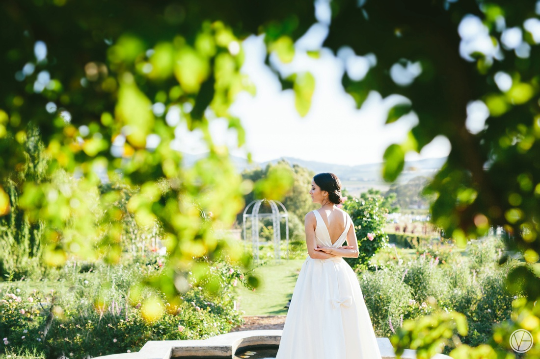 VividBlue-Kgosientso-Georgia-Aleit-Wedding-Photography147