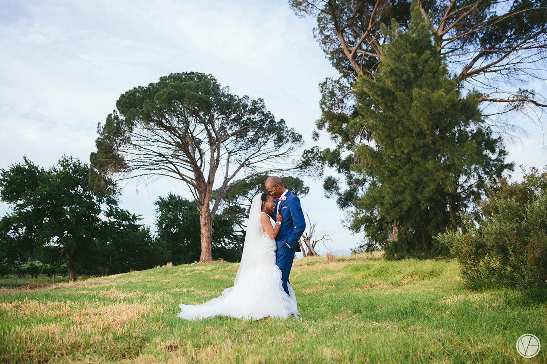Vivid-Blue-Apoti-Zanele-Val-de-Vie-Wedding-Photography094