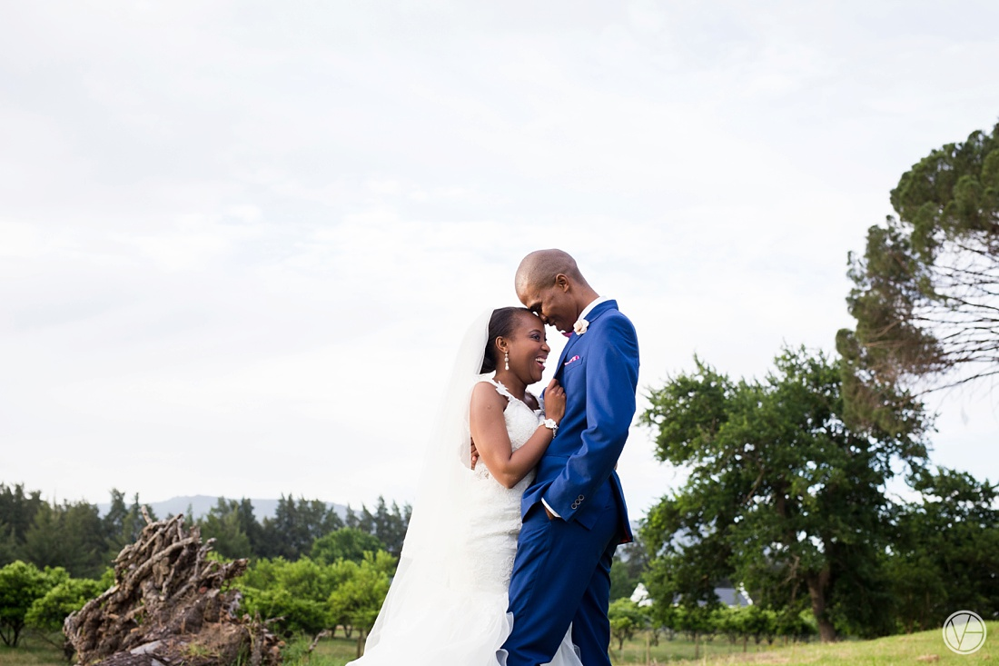 Vivid-Blue-Apoti-Zanele-Val-de-Vie-Wedding-Photography095
