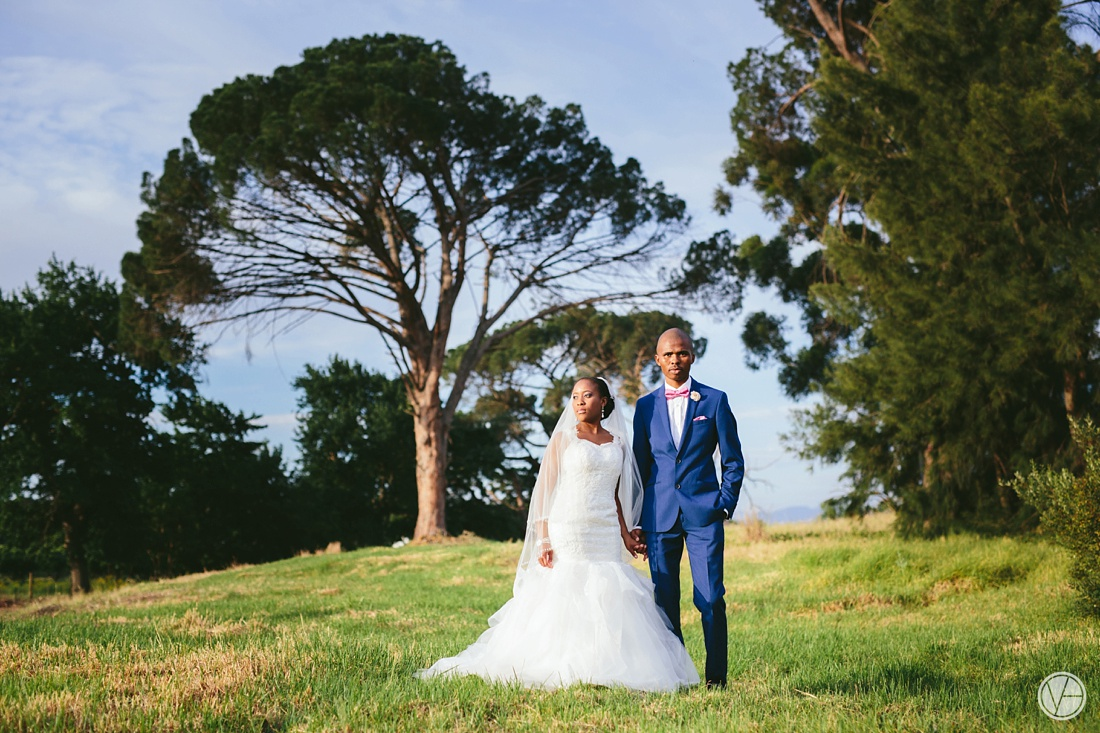 Vivid-Blue-Apoti-Zanele-Val-de-Vie-Wedding-Photography098