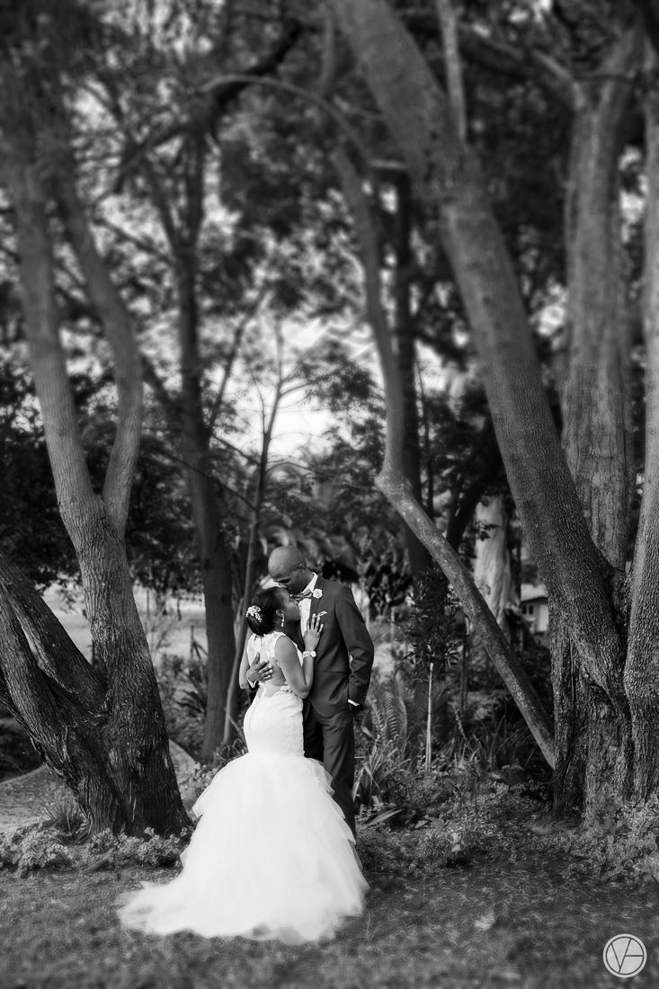 Vivid-Blue-Apoti-Zanele-Val-de-Vie-Wedding-Photography115