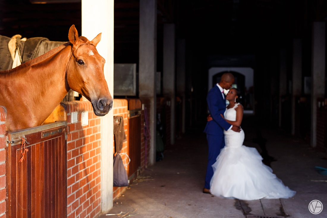 Vivid-Blue-Apoti-Zanele-Val-de-Vie-Wedding-Photography130