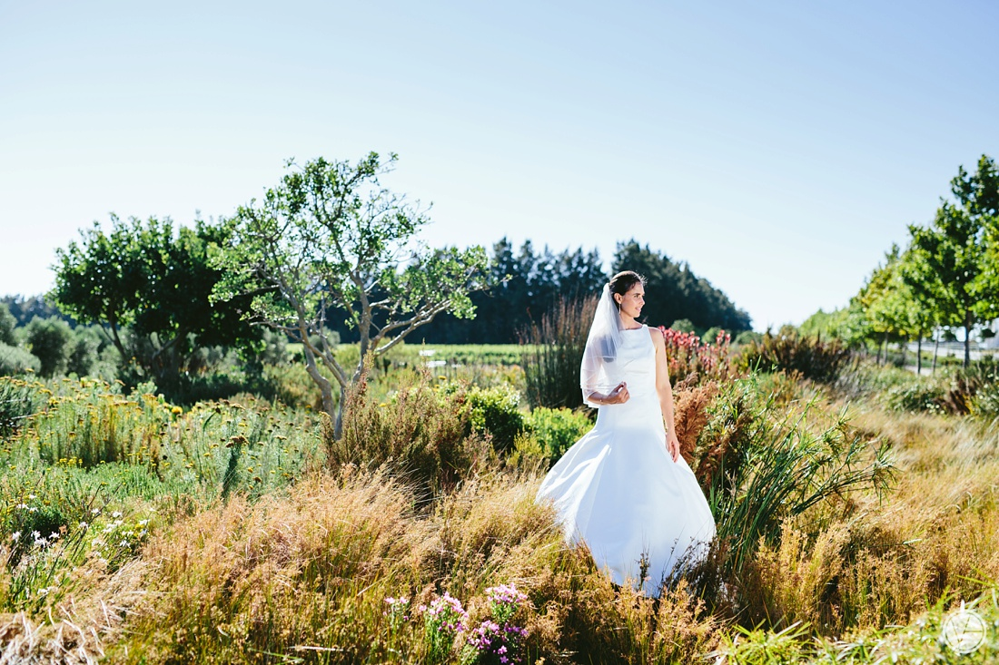 VIvidblue-Phillip-Nelrie-Cavalli-wedding-aleit-photography092