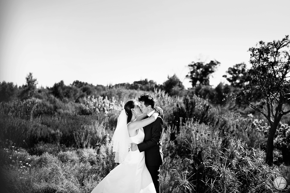 VIvidblue-Phillip-Nelrie-Cavalli-wedding-aleit-photography095