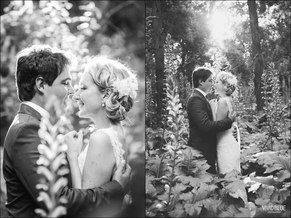 Vivid-Blue-Jaco-lara-wedding-lourensford-aleit114