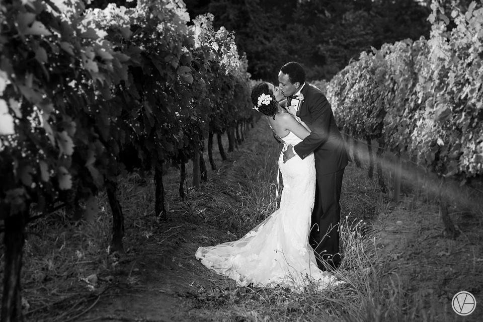 Vividblue-Mohamed-Janine-Wedding-Molenvliet-Photography111