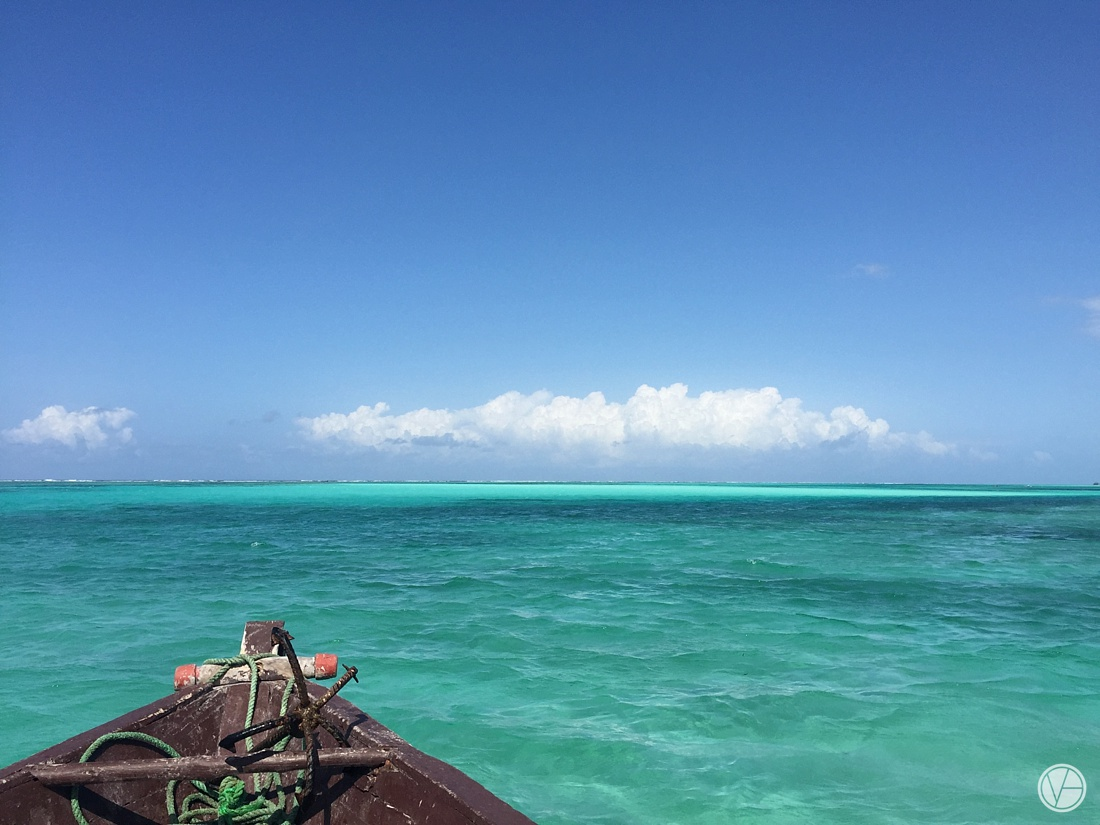 Vivid-blue-Zanzibar-wedding-Karafuu-Cobus-Cecilia-photography157