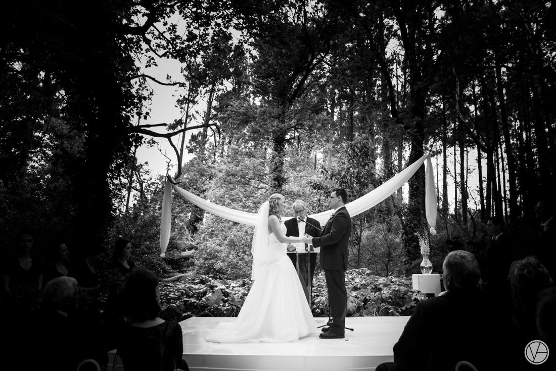 Vivid-Blue-Neil-and-Leana-Wedding-Lourensford-Photography048