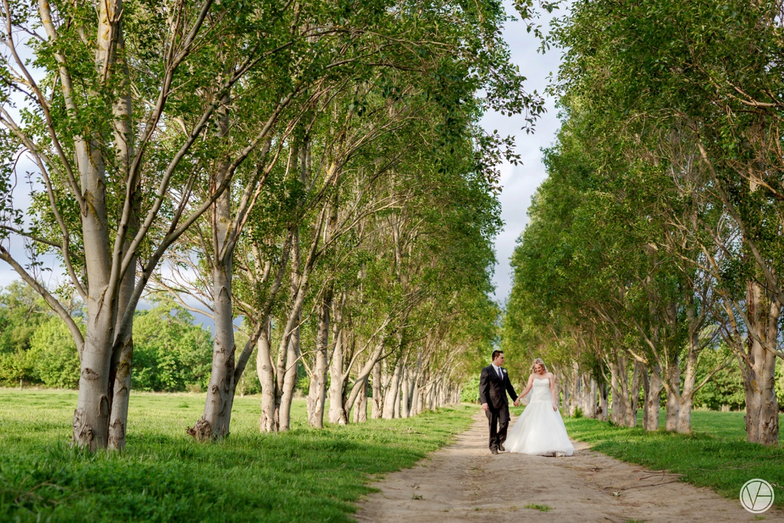 Vivid-Blue-Neil-and-Leana-Wedding-Lourensford-Photography076
