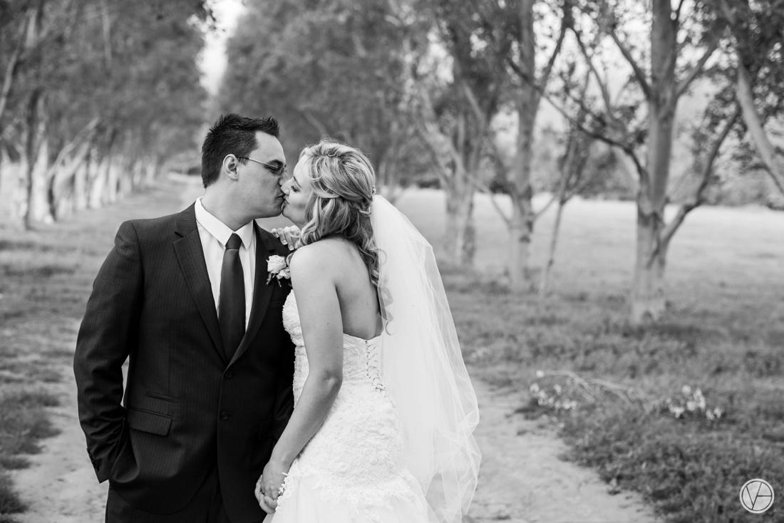 Vivid-Blue-Neil-and-Leana-Wedding-Lourensford-Photography077