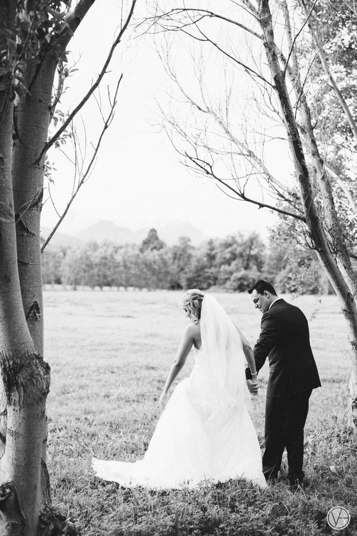 Vivid-Blue-Neil-and-Leana-Wedding-Lourensford-Photography078