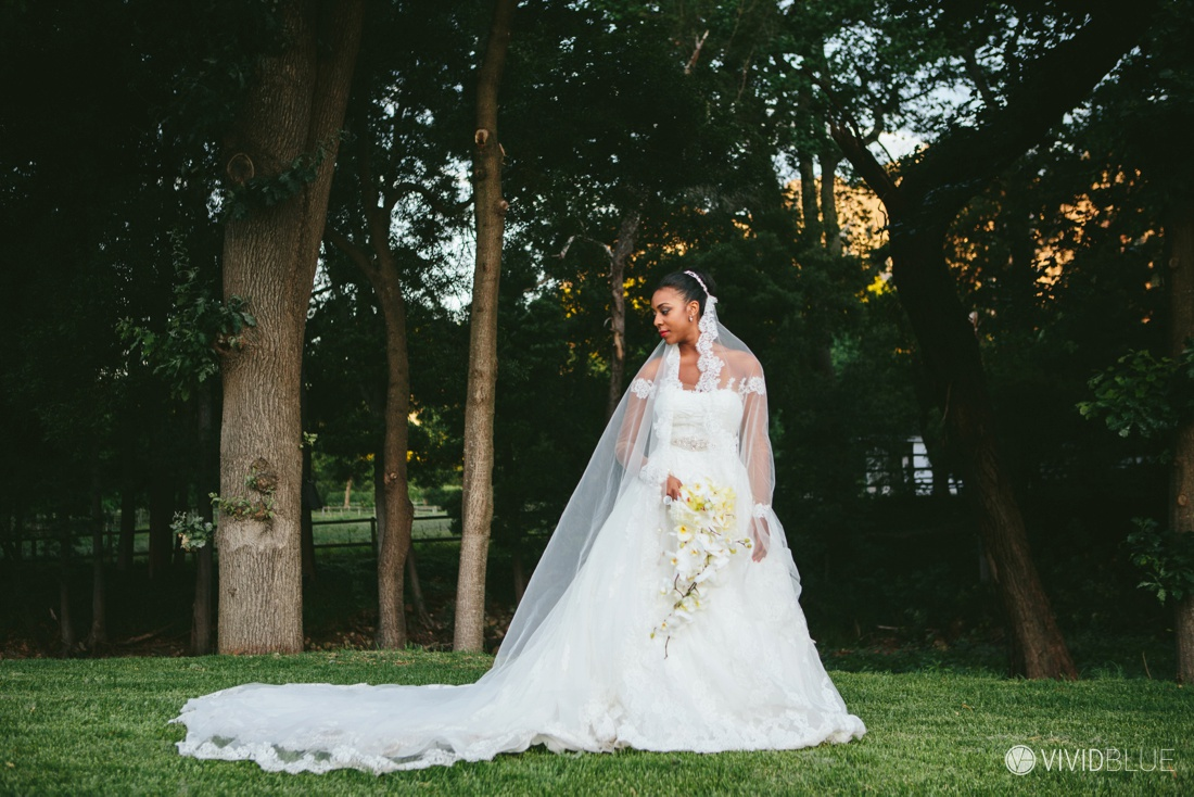 VIVIDBLUE-Edgar-Paloma-Wedding-Molenvliet-Photography122