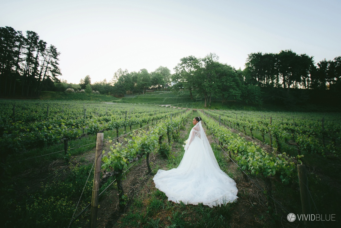 VIVIDBLUE-Edgar-Paloma-Wedding-Molenvliet-Photography133