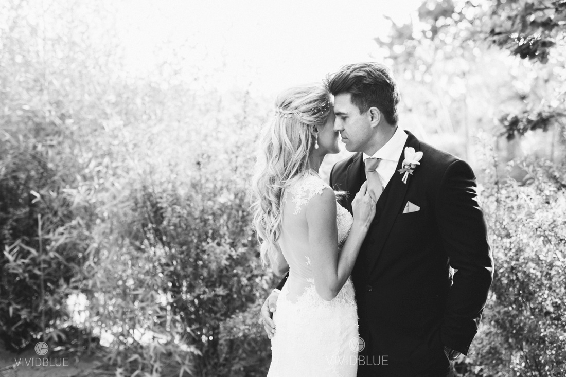 Vividblue-Wynand-olivier-Anri-Wedding-Lourensford_aleit-photography015