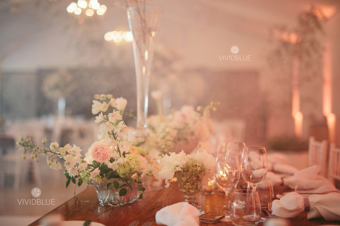 Vividblue-Wynand-olivier-Anri-Wedding-Lourensford_aleit-photography017