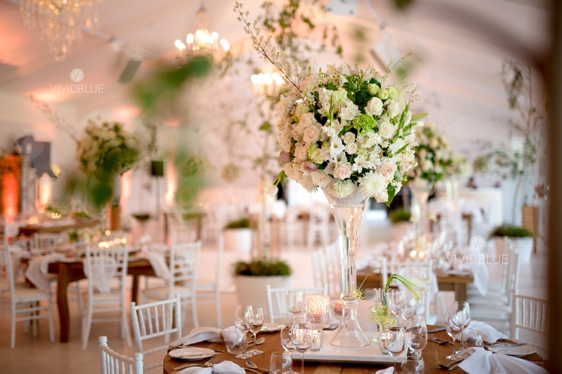 Vividblue-Wynand-olivier-Anri-Wedding-Lourensford_aleit-photography018
