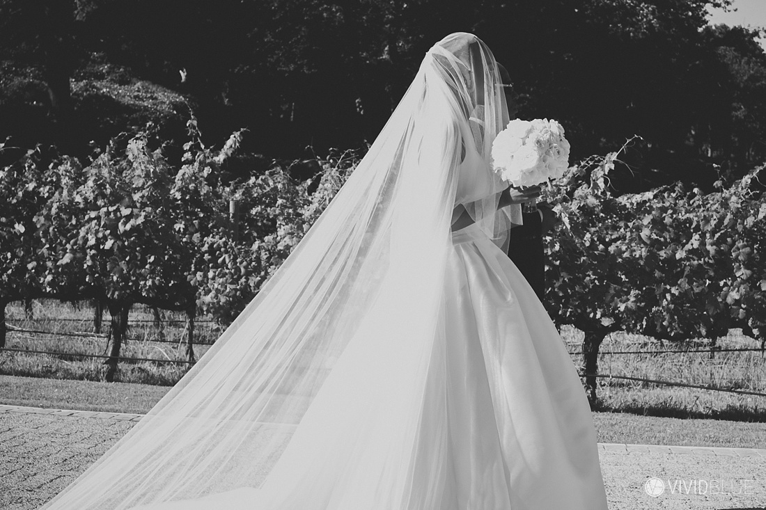 Vividblue-Matome-Nakedi-Molenvliet-Wedding-Photography-0063