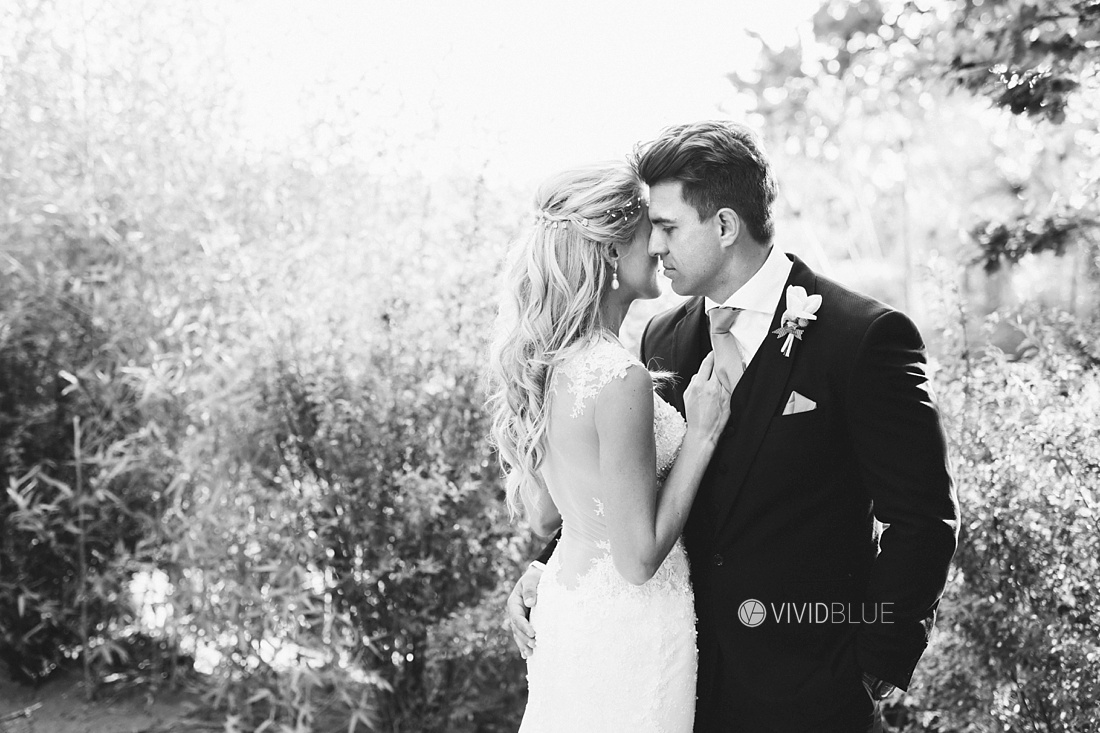 Vividblue-Wynand-olivier-Anri-Wedding-Lourensford-Aleit-Photography0120