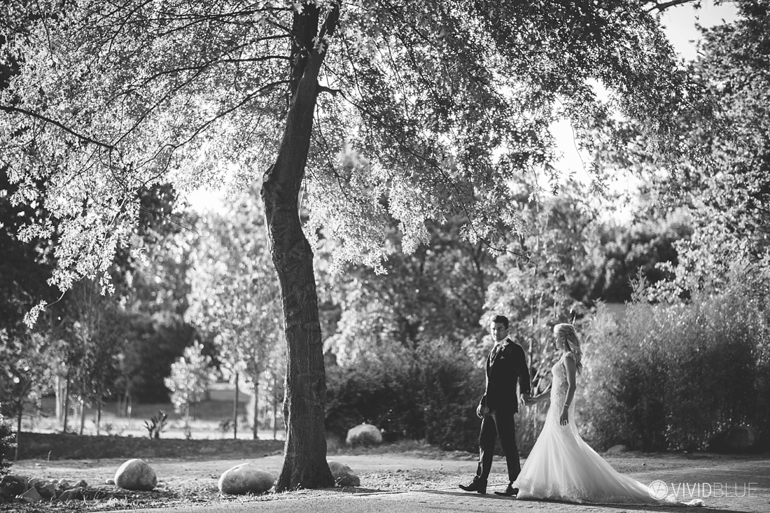 Vividblue-Wynand-olivier-Anri-Wedding-Lourensford-Aleit-Photography0127
