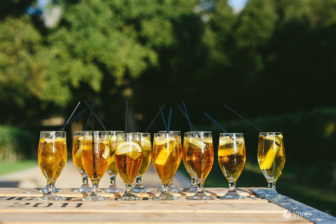 VIVIDBLUE-Anthony-Bahaneh-wedding-Molenvliet-Photography086