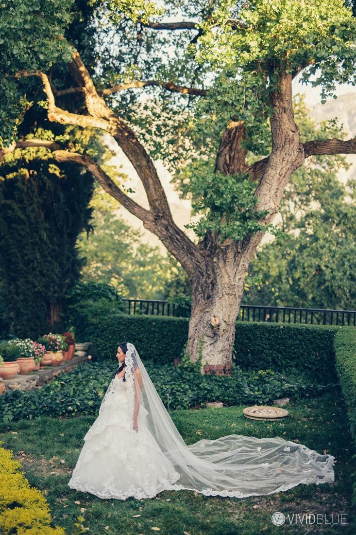 VIVIDBLUE-Anthony-Bahaneh-wedding-Molenvliet-Photography096