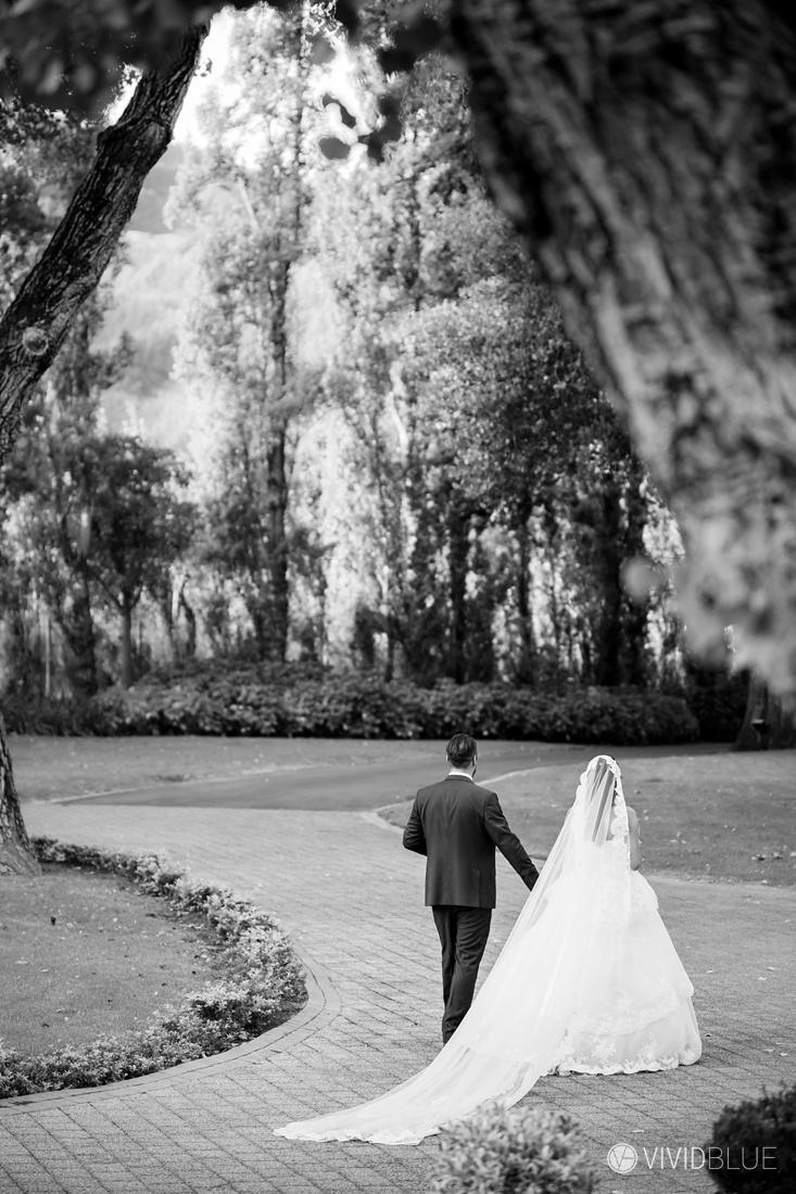 VIVIDBLUE-Anthony-Bahaneh-wedding-Molenvliet-Photography106