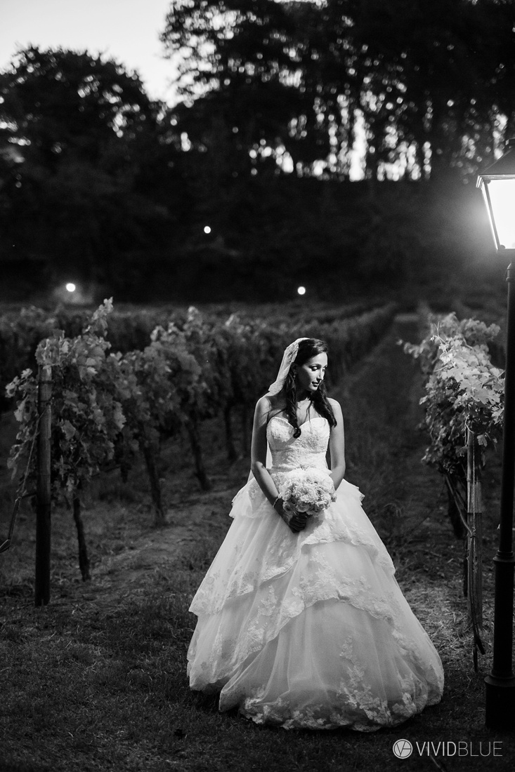 VIVIDBLUE-Anthony-Bahaneh-wedding-Molenvliet-Photography128
