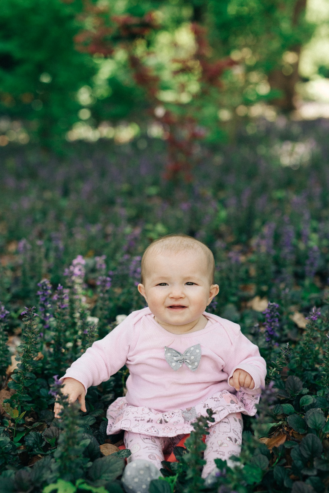 an Image taken by Vividblue of a baby girl siting in-between purple flowers.
