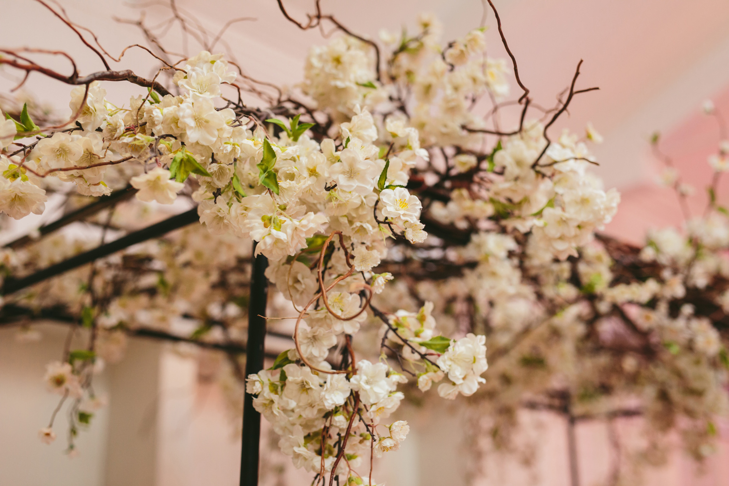 an image taken by Vividblue of a floral installation at Val de Vie.