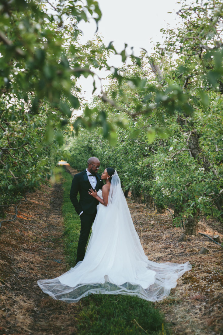 I beautiful wedding couple facing each other and looking into each others eyes  in-between the vineyards on Lourensford wine estate.
