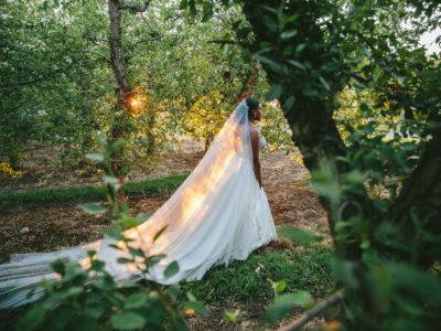 Reeme &  Tshepo - Wedding - Louresnford